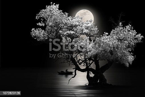 istock Moon shines beautifully on the dream country lighting up the fisherman 1072820126
