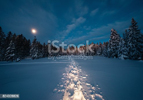 Winter landscape with footpath in the snow. Night scene with moonlight.