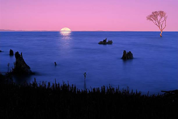 Moonrise over Moreton Island in Queensland Australia stock photo