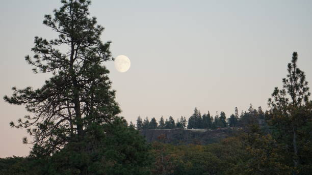 Moonrise Over Oregon stock photo