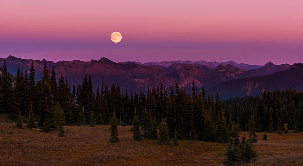 Moonrise over the Cascades - foto stock