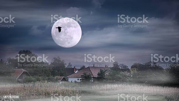 Photo of Moonrise over village