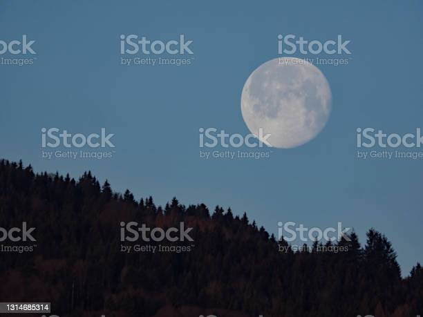 Photo of Moonset behind the forest, Monduntergang
