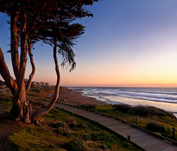 moonstone beach at sunset panorama - central coast california stock photos and pictures