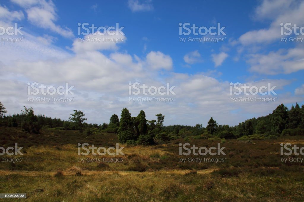 Moor along Hærvejen the army road pilgrim route stock photo