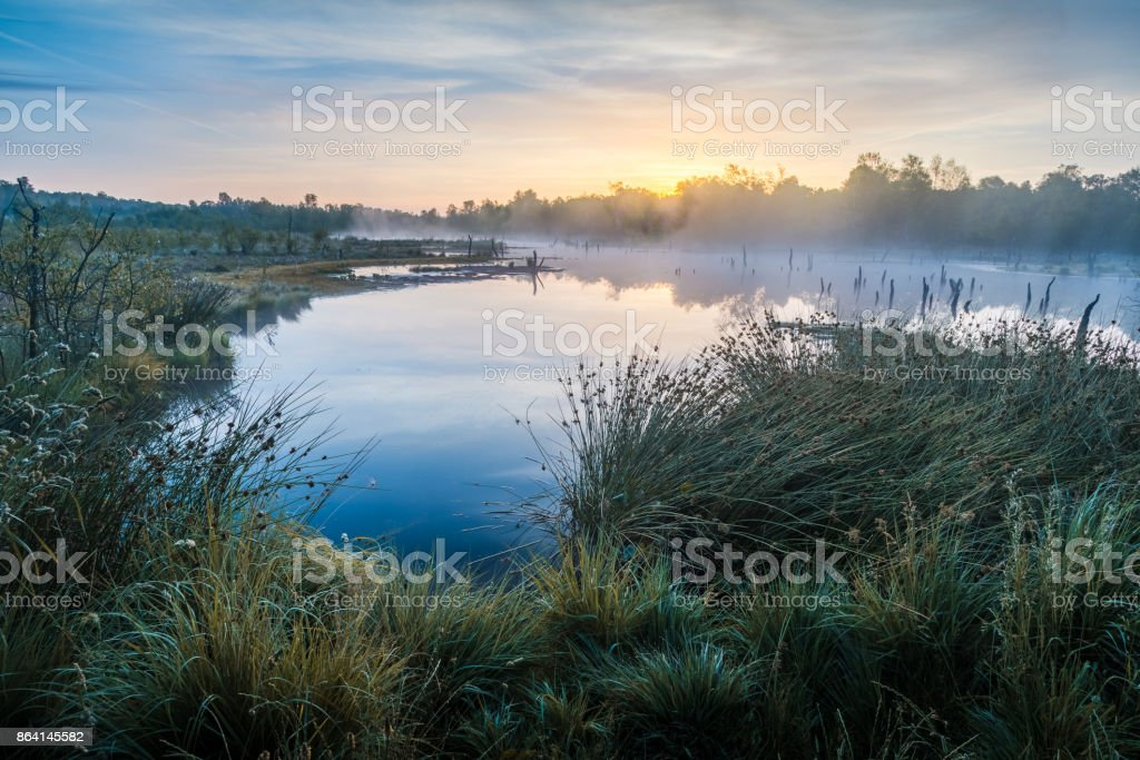 Moorsee im Sonnenaufgang royalty-free stock photo