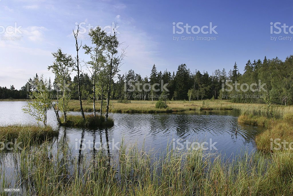 moor lake royalty-free stock photo