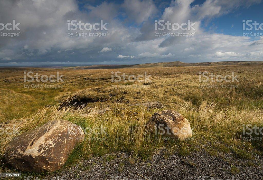 moor marshland royalty-free stock photo