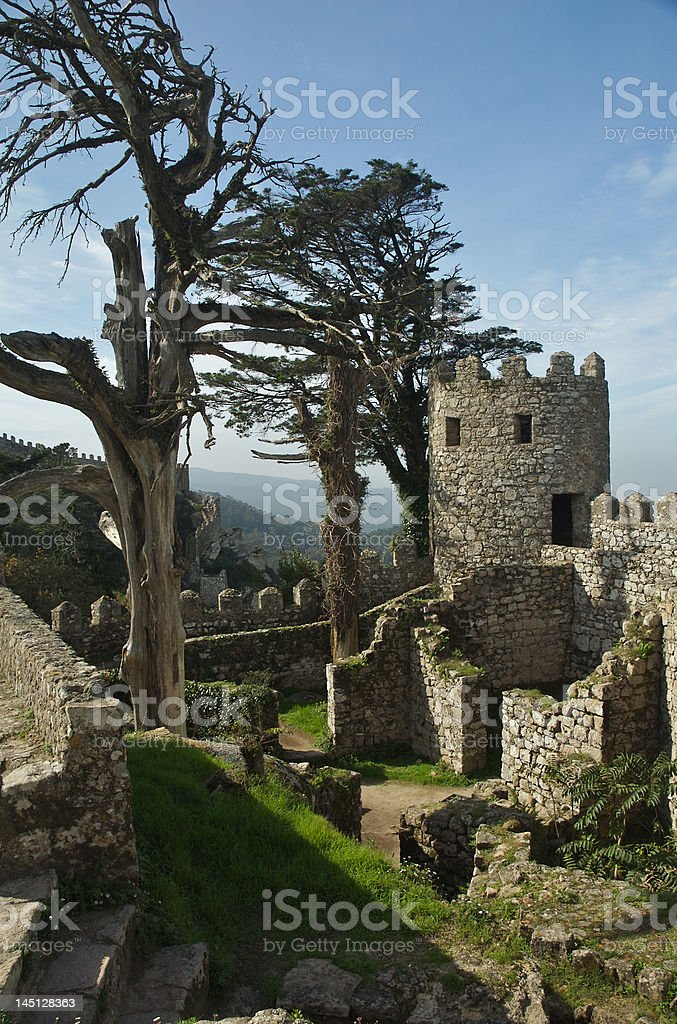 Moorish castle in Sintra royalty-free stock photo