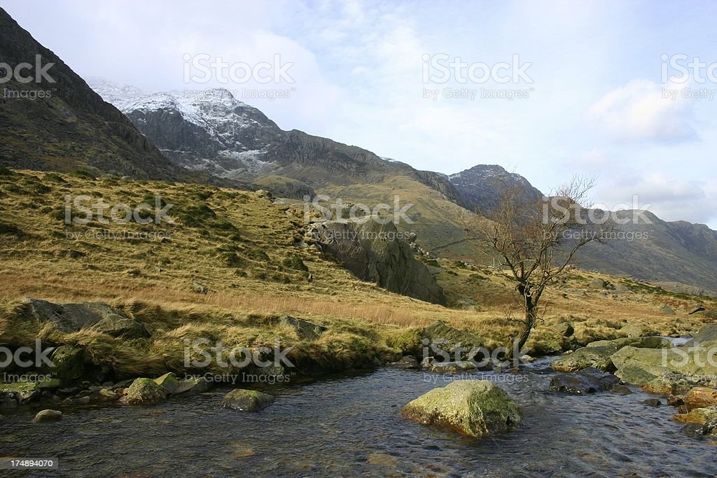 moorland scene - late winter season royalty-free stock photo