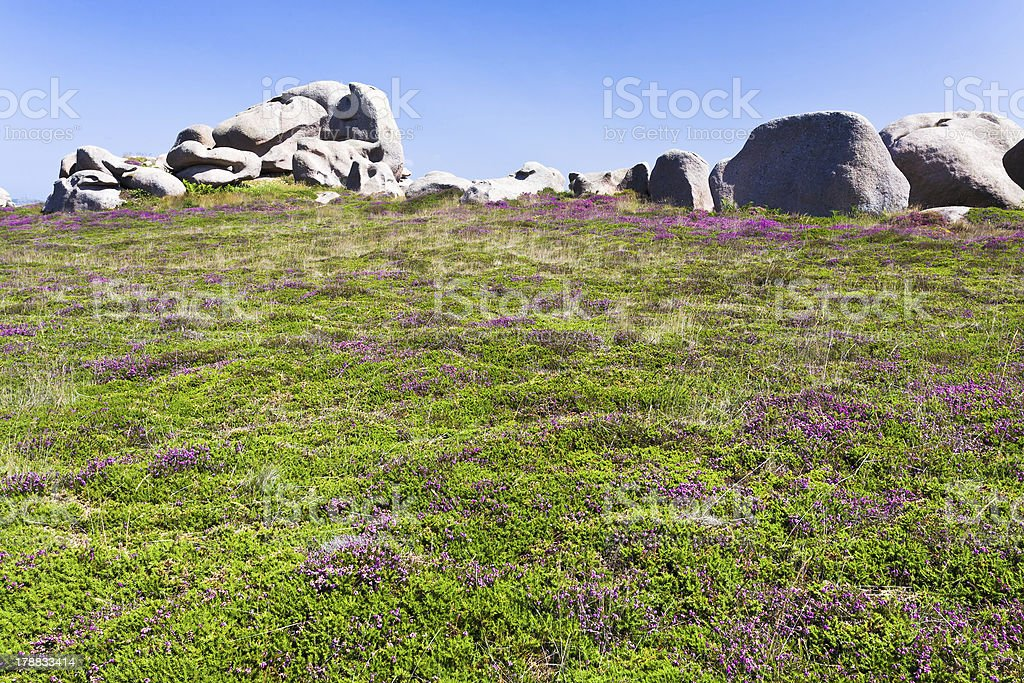 moorland with stone boulders in Brittany stock photo