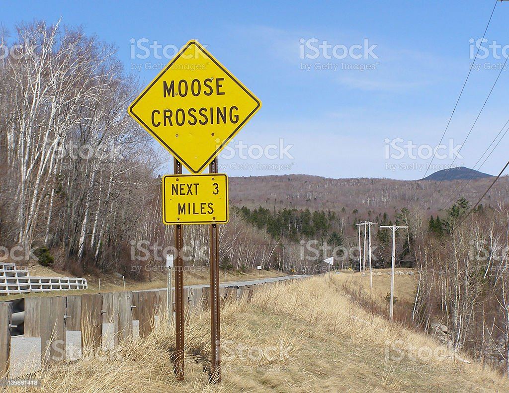 Moose Crossing Sign royalty-free stock photo