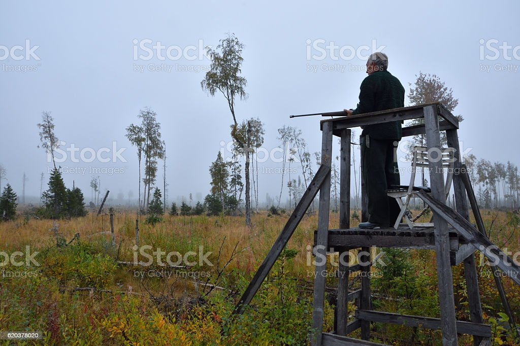 Moose hunter from left side standing in a hunting tower foto de stock royalty-free