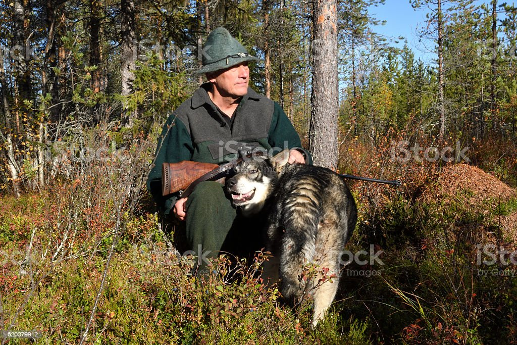 Moose hunter with his dog foto de stock royalty-free