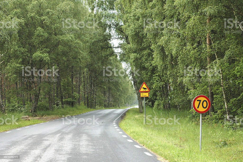 Moose Sign stock photo