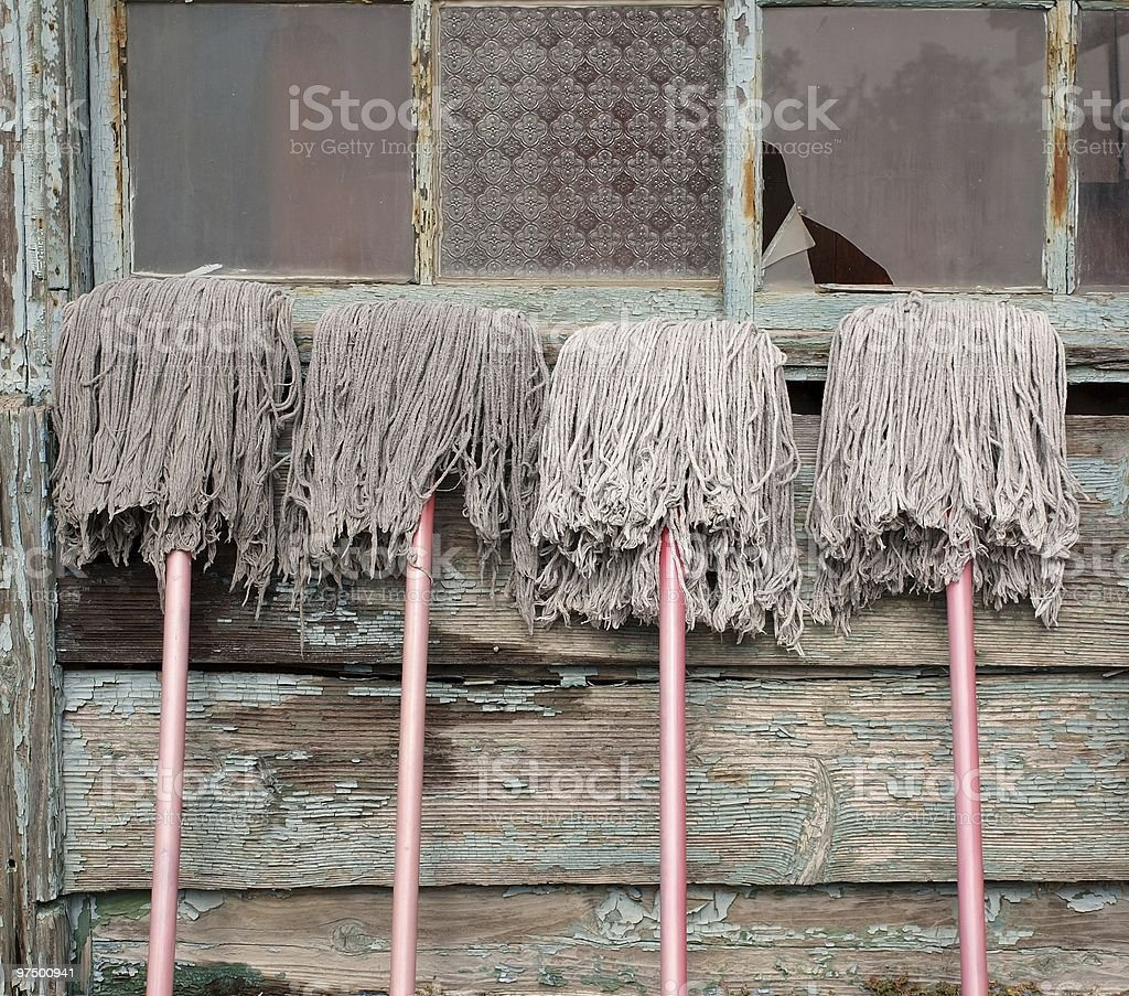 Mops and Old House royalty-free stock photo