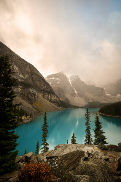 Moraine Lake at dawn, Valley of the Ten Peaks, Banff National Park Moraine Lake at dawn on a cloudy, rainy morning, Valley of the Ten Peaks, Banff National Park. valley of the ten peaks stock pictures, royalty-free photos & images