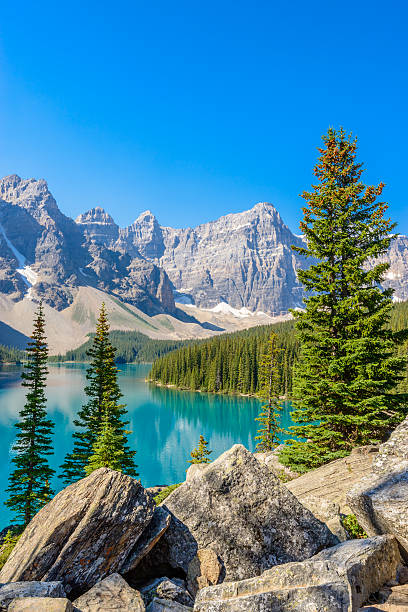 Moraine Lake, Canadian Rockies The majestic Moraine Lake in Banff National Park, Canadian Rockies canadian rockies stock pictures, royalty-free photos & images