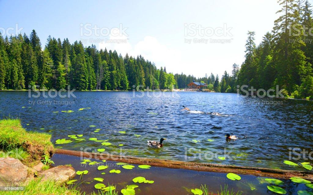 Moraine Lake Grosser Arbersee im Nationalpark Bayerischer Wald. – Foto
