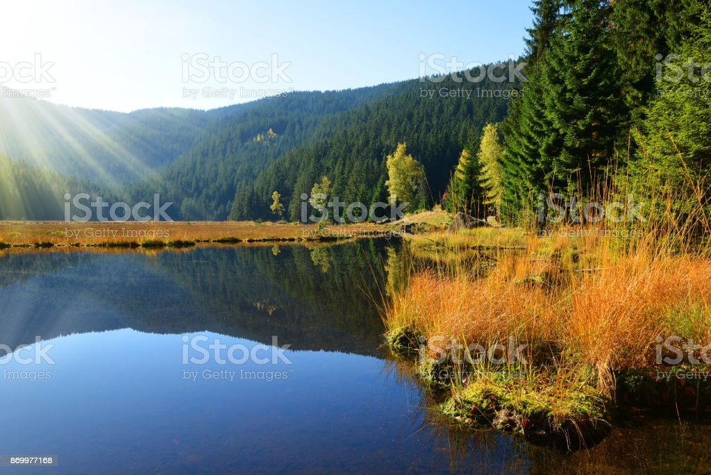 Moraine lake Kleiner Arbersee in National park Bavarian forest.Germany. stock photo