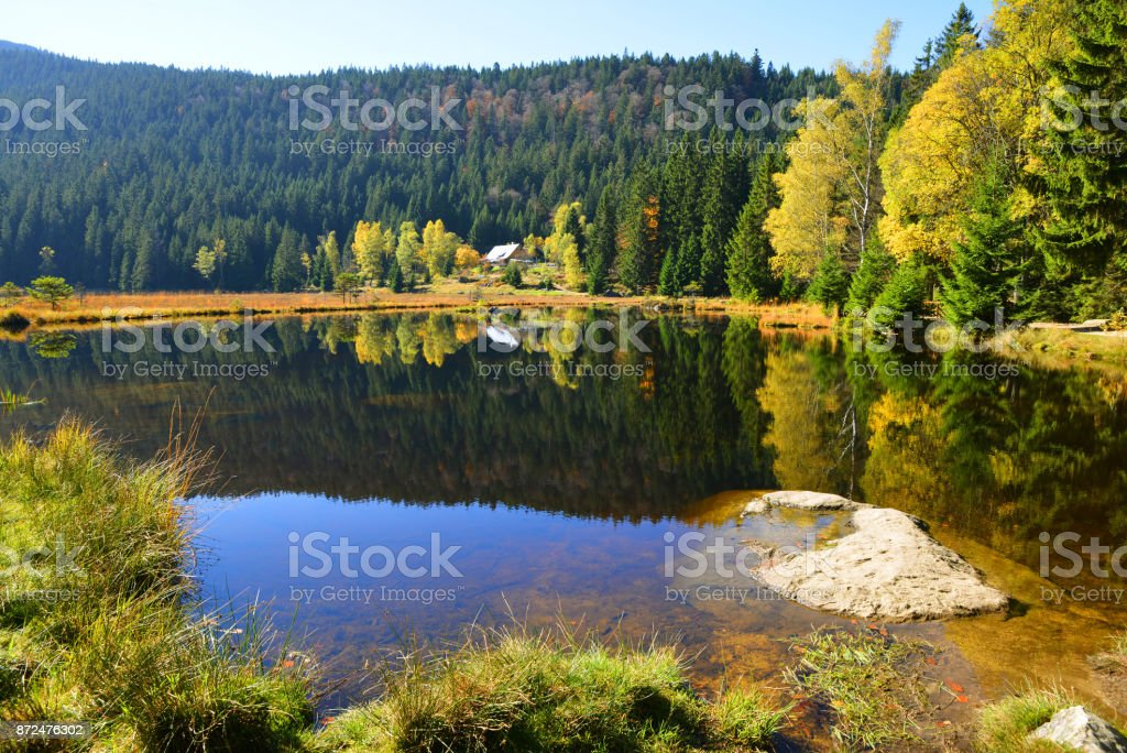 Moraine lake Kleiner Arbersee in National park Bavarian forest,Germany. stock photo