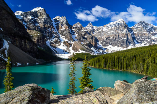 Moraine Lake A classic view of Moraine Lake on a sunny day. moraine lake stock pictures, royalty-free photos & images