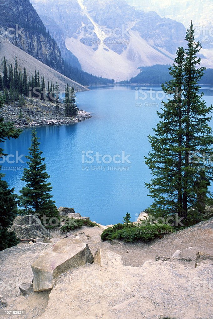 Moraine lake with trees and the mountain royalty-free stock photo