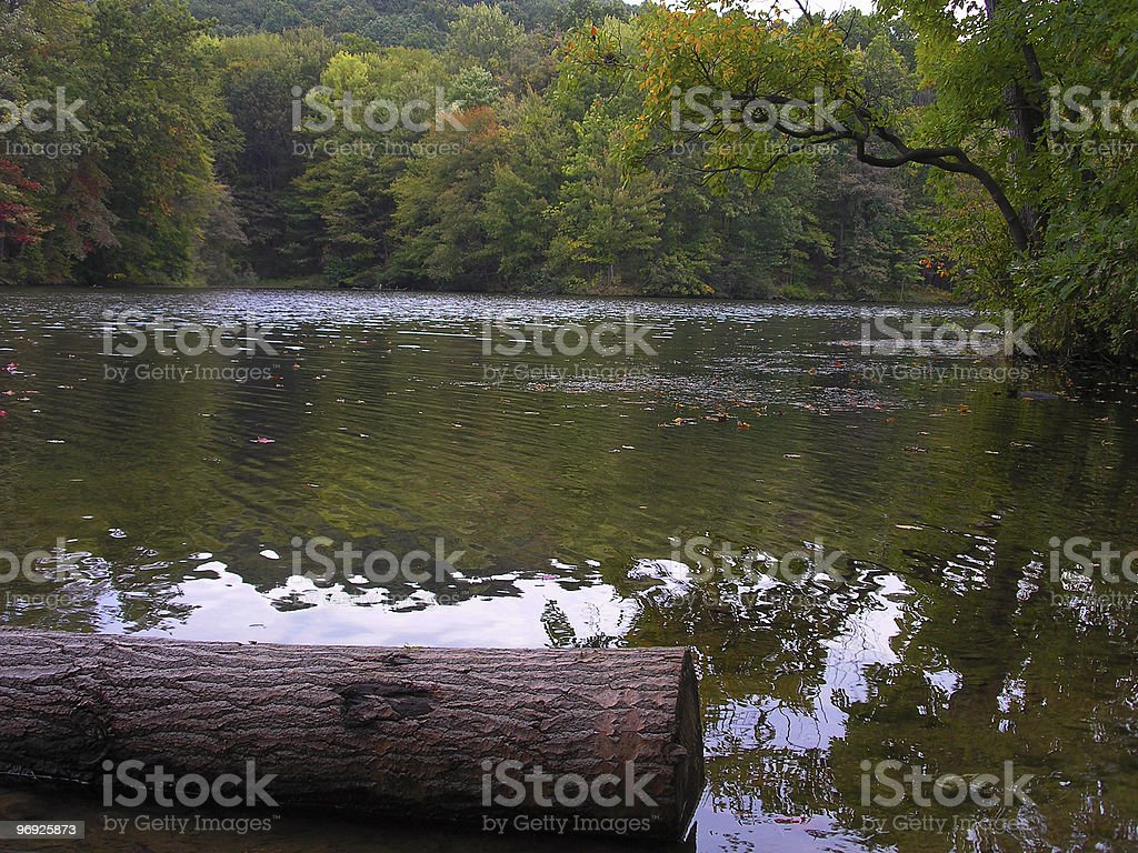 Moraine State Park Lake royalty-free stock photo