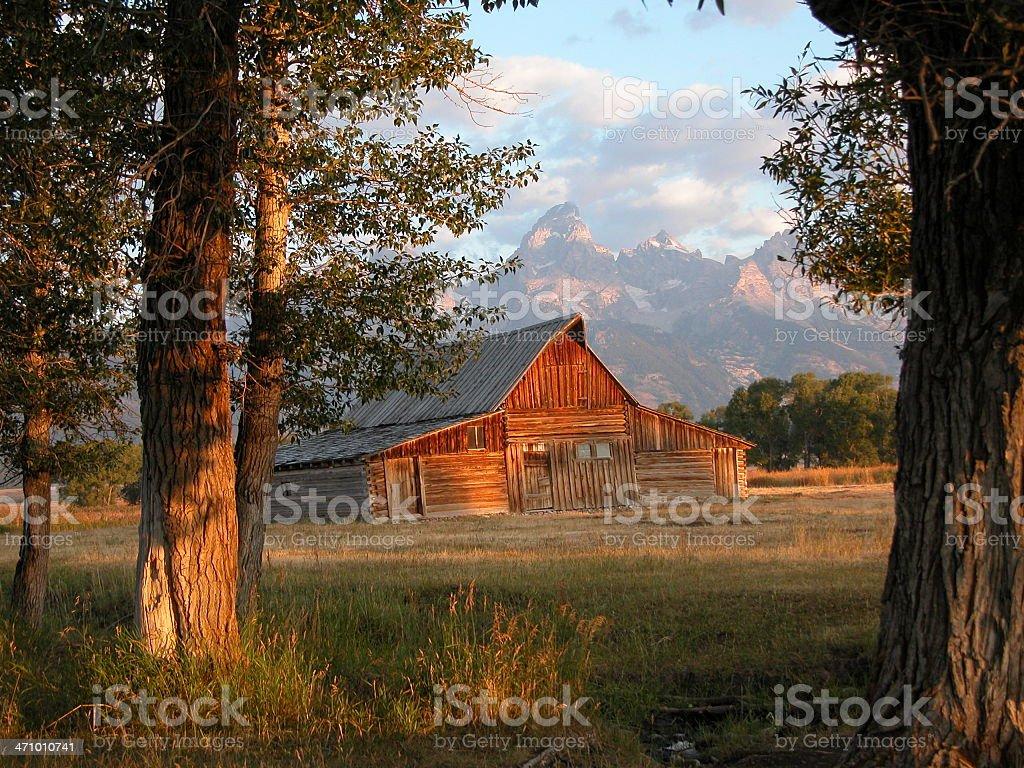 Moran Barn Morning Sun royalty-free stock photo
