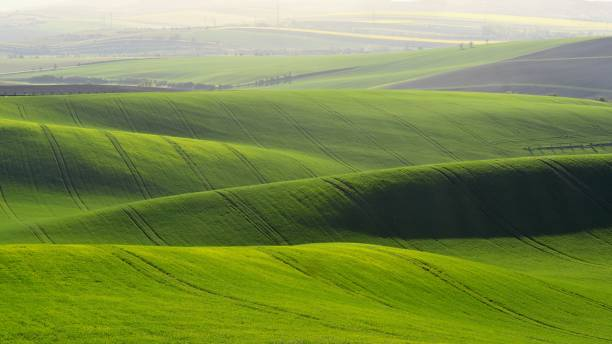 Moravian Tuscany – beautiful spring landscape in south Moravia near Kyjov town. Czech Republic - Europe. Moravian Tuscany – beautiful spring landscape in south Moravia near Kyjov town. Czech Republic - Europe. moravia stock pictures, royalty-free photos & images