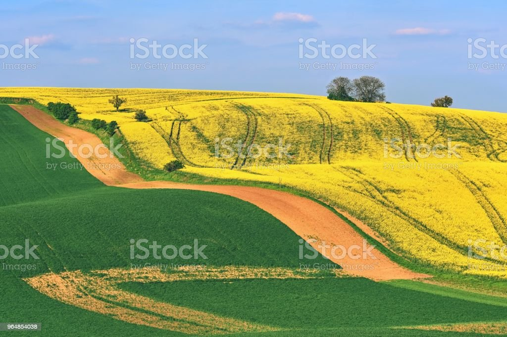 Moravian Tuscany, beautiful spring landscape in south Moravia near Kyjov town. Czech Republic - Europe. royalty-free stock photo