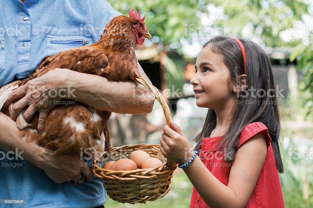 More eggs for tomorrow stock photo