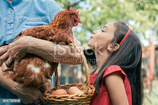 Little girl looking at brown hen and asking for more eggs