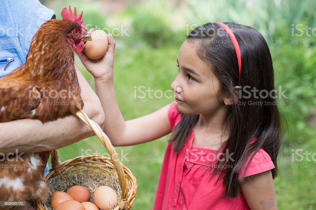 More eggs for tomorrow please stock photo