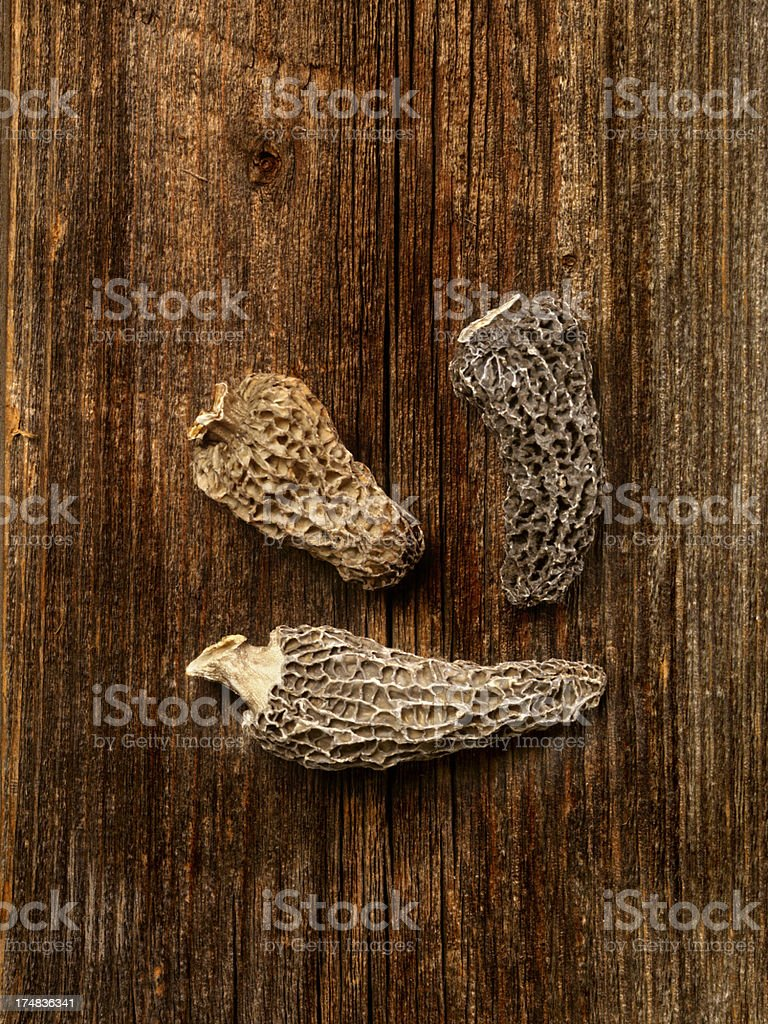 Morel Mushrooms royalty-free stock photo
