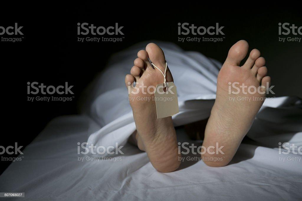 Morgue stock photo