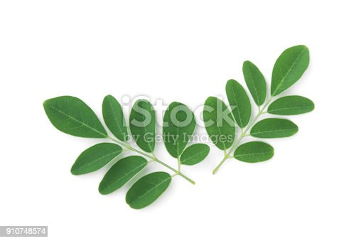 istock moringa leaves tropical herb isolated on white background 910748574
