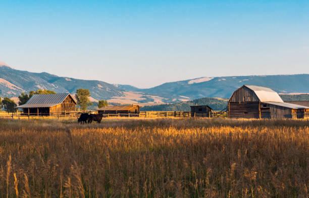 Mormon Row Historic District, Grand Teton NP, WY, USA stock photo
