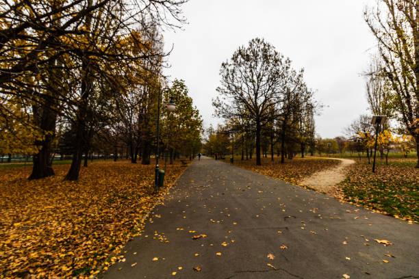 Morgen, Gassen des Izvor Parks. Menschen laufen, gehen, gehen zur Arbeit in Bukarest, Rumänien, 2019 – Foto