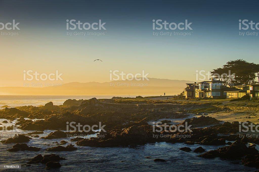 Morning at Monterey stock photo