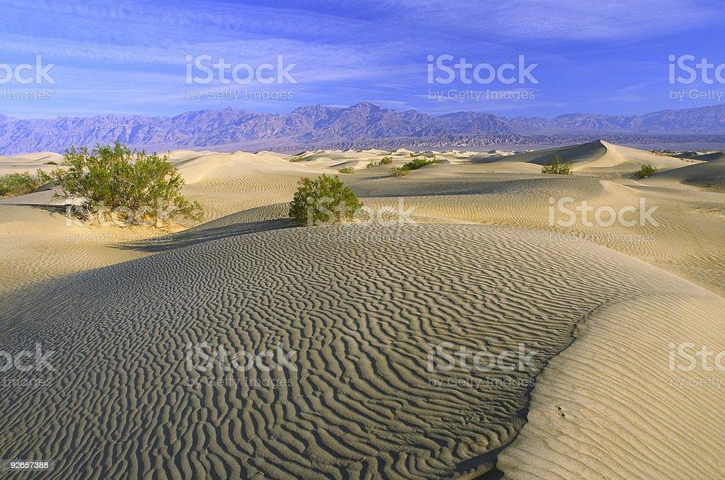 Morning at sand dunes royalty-free stock photo