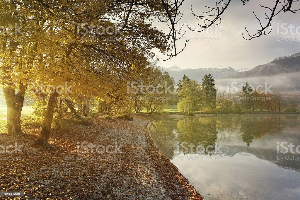 morning at the lake royalty-free stock photo