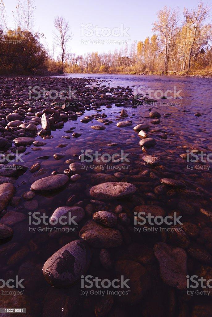 Morning at the river royalty-free stock photo