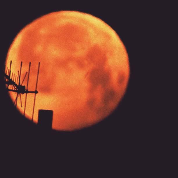 morgen blut mond eclipse - englisches vollblut stock-fotos und bilder