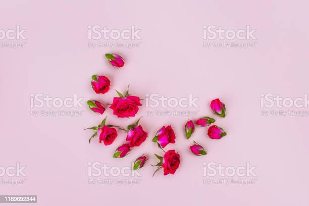 Morning card of beautiful roses and on pink background top view picture id1169692344?b=1&k=6&m=1169692344&s=612x612&h=f j2wv h8elry4qu0suf6uril0um7uoluf0xbezrge4=