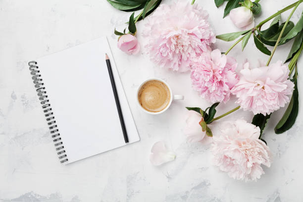 Morning coffee mug for breakfast, empty notebook, pencil and pink peony flowers. Flat lay. Woman working desk. stock photo