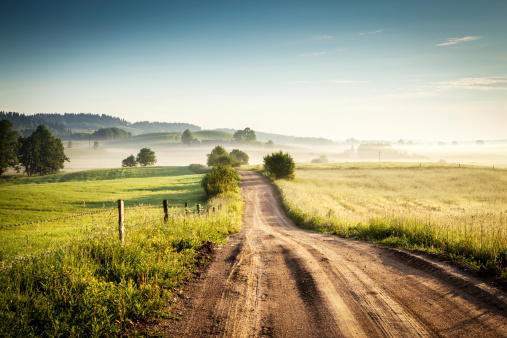 Morning Country Road through the Foggy Landscape - Colorful Countryside