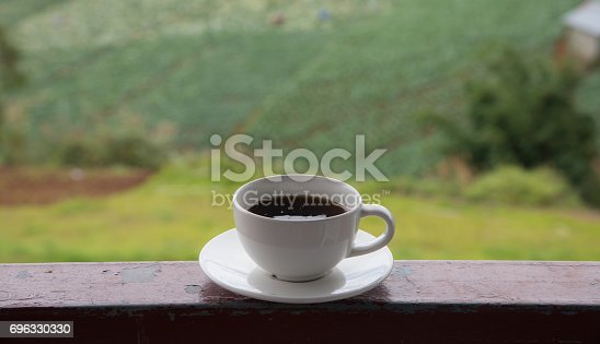 1135319558 istock photo Morning cup of coffee on green cabbage field background 696330330