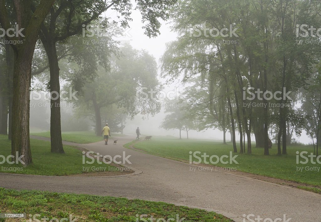 Morning Exercise royalty-free stock photo