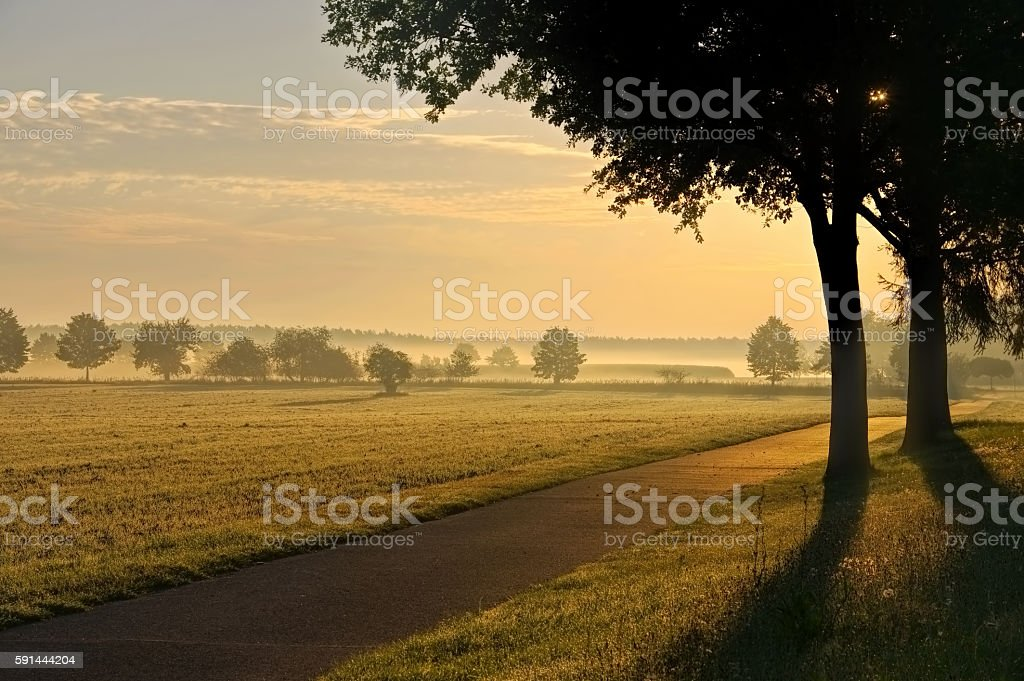 morning fog in a rular area stock photo